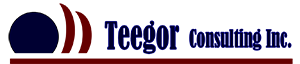 Teegor Professional Engineering Consulting Services